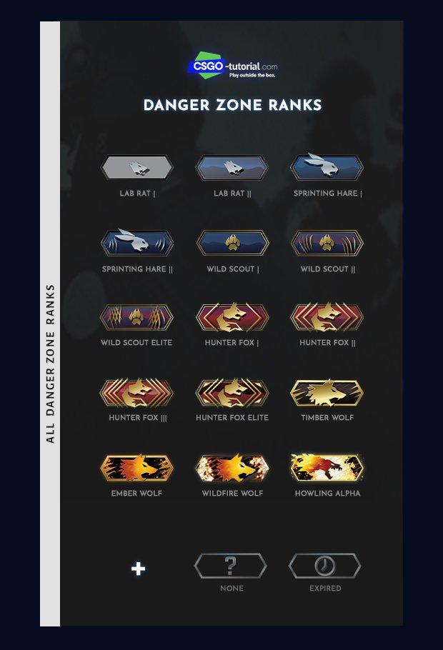 all csgo ranks danger zone