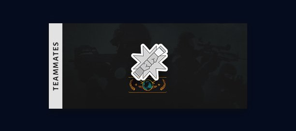 reach global elite rank - teammates